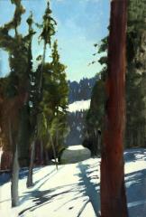 sequoia-national-park-near-general-sherman