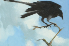 crow_sky