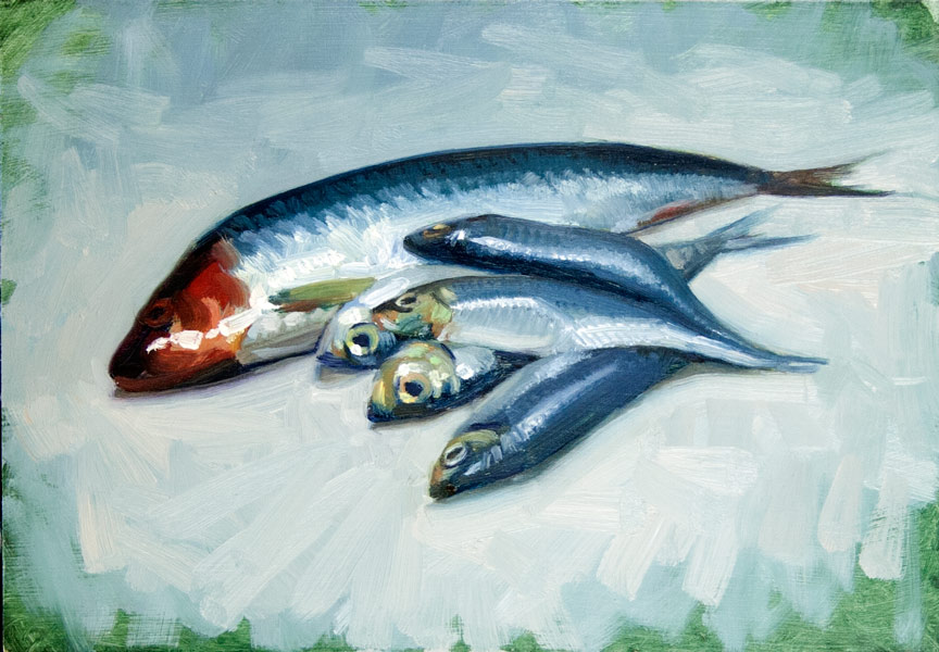 herring-and-sprats_s