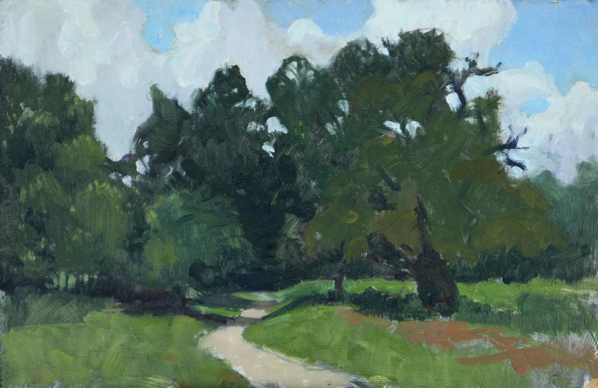 A-path-through-the-trees,-Shorne-Kent